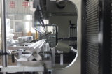 Máquina de dobra hidráulica da folha de metal do freio da imprensa do CNC