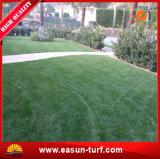 """De Vorm die van """" S """" het Kunstmatige Gras van het Gras modelleren"""
