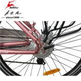 """"""" elektrisches Fahrrad des Aluminiumrahmen-26 mit vorderer/hinterer v-Bremse (JSL038G-1)"""