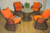Tableau Furniture-45 extérieur de rotin de loisirs