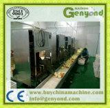 Descascador de máquina de desbaste de frutos avançada máquina de rebentamento