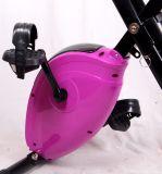 普及したホーム適性装置の磁気エアロバイク