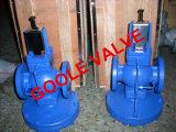 Vanne de réduction de pression de vapeur auto-opérée (GADP17)