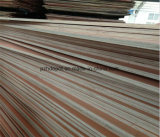 1220x2440x18mm madera contrachapada con núcleo comercial de El Álamo