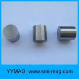 Allerlei Permanente AlNiCo 5 Magneten