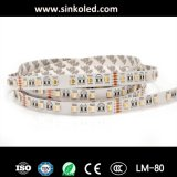 DC 12V 24V SMD5050 RGBW 4in1 유연한 LED 지구