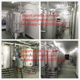 Linea di produzione del yogurt dell'acciaio inossidabile prezzo della macchina per la lavorazione del latte