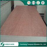 Fabricante da madeira compensada da mobília do núcleo da folhosa do baixo preço 3mm 6mm