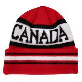 Chapéu feito malha do inverno do chapéu na cor agradável NTD014