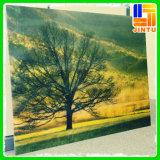 Progettare la stampa per il cliente UV della pittura a olio dello scrittorio di nuovo anno 2015