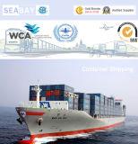 Konkurrierende Ozean-Terminkurse von Ningbo zu Felixstowe