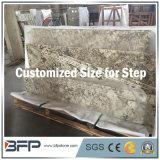 Beautiful Snowy Fox Granite Escalier / Escalier / Escalier pour plancher intérieur