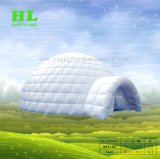 صنع وفقا لطلب الزّبون مجّانا أن يصمّم يعلن يخيّم خيمة قابل للنفخ