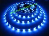 LED 가벼운 5050SMD 14.4W/M LED 지구 빛