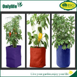 Le jardin respectueux de l'environnement de ménage d'Onlylife élèvent le sac