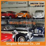 Automobile di Mutrade di qualità che parcheggia l'elevatore domestico residenziale di parcheggio della famiglia dei 2 manifesti