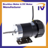 Постоянный магнит Pm Бесщеточный двигатель BLDC постоянного тока при движении с маркировкой CE