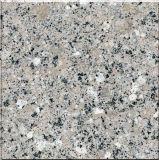Mattonelle Polished /Floor/Stairs/Slab della pietra per lastricati del granito di alta qualità