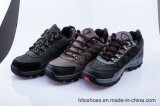 Самая лучшая продавая взбираясь обувь безопасности типов
