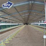 Il Senegal ha prefabbricato la Camera del pollame del blocco per grafici d'acciaio/costruzione leggere del pollo