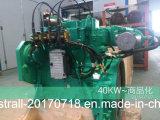 Generatore del gas naturale del colpo B3.9g-G45 Cummins del motore diesel 30kw 4