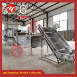 Ligne de lavage surfante machine industrielle de fruit végétal de nettoyage de myrtille