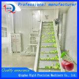 Essiccatore della cinghia dell'aria calda dell'asciugatrice dell'alimento (acciaio inossidabile)