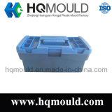 Muffa di plastica personalizzata della cassetta portautensili dell'iniezione/casella del lavoro