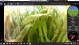 Autonome Unterwasserkamera Rov, Unterwasserinspektion Rov