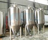 3bbl bière isolée par jupe Unitank (ACE-FJG-0120)
