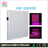 Fabricado en China la luz del panel LED 14W luz crecer