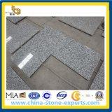 G439 Countertop van het Graniet van Bianco Taupe voor Keuken, Badkamers