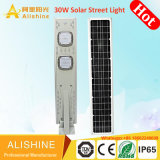 indicatore luminoso di via solare di 6m LED tutto in uno con illuminazione di 30W LED