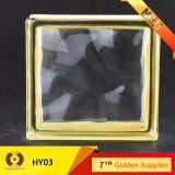 De bouw van Baksteen van het Glas van het Glas de Holle (LPH08)