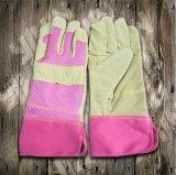 Перчатка Перчатк-Промышленной Перчатк-Безопасности кожи Перчатк-Свиньи работы Перчатк-Защитная