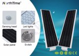 30W 운동 측정기 점화를 가진 통합 LED 태양 가로등