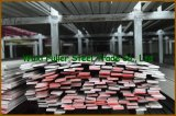 ASTM A479 304 Roestvrij staal Bar voor Sale