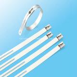 Serre-câble Échelle-Multi de blocage de picot d'acier inoxydable