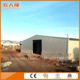 Costruzione dell'allevamento della struttura d'acciaio per pollame