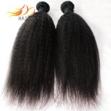 Estensione naturale mongola dei capelli dei capelli umani del Virgin poco costoso 8A