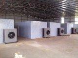 Kinkai 3000 quilogramas de capacidade fresca frutifica máquina de secagem para desidratar frutas