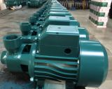 Qb80 전기 깨끗한 물 펌프 최신 판매 신형 0.75kw/1HP