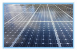 Erneuerbare Energie Sokar Zellen-Masse (SYFD250W-Mono)