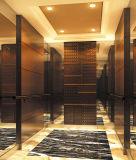 Elegante y caja fuerte ascensor de pasajeros