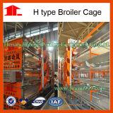 Cage de poulet à rôtir de couche de matériel de volaille fabriquée en Chine