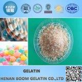 Gelatina, pegamento caliente del derretimiento