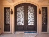 Классицистическая дверь входа фронта утюга верхней части свода конструкции