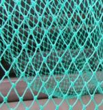 매듭을 짓는 최신 판매 녹색 가장자리 PP/PE 스포츠 그물을 그물로 잡기