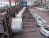 Tige de fer de matériaux de construction/Electro sur le fil de fer galvanisé pour la reliure
