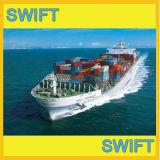 FCL y LCL Fletes marítimos puerta a puerta desde China hasta el puerto de Rotterdam, Amsterdam, Países Bajos